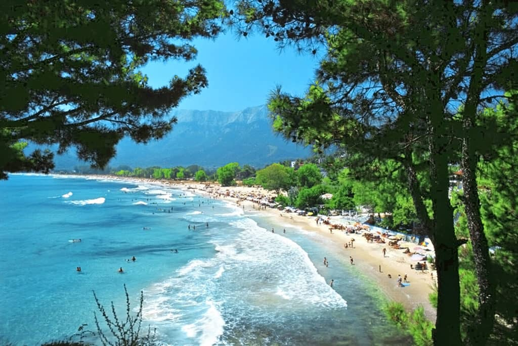 Pine trees and mountain view at Golden Beach -best beach in Thassos island Greece