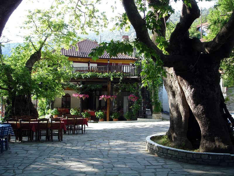 Square with a plane tree in Kazaviti village