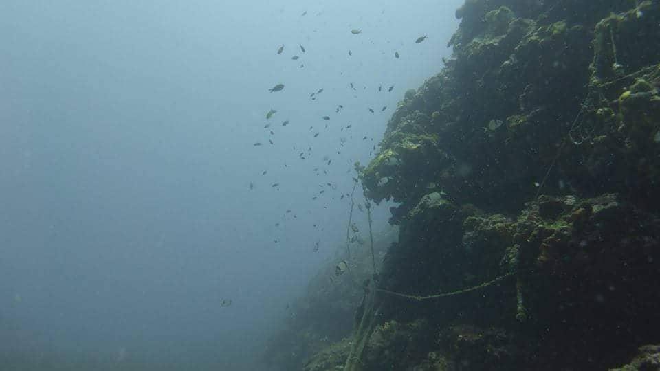 sea bottom in thassos