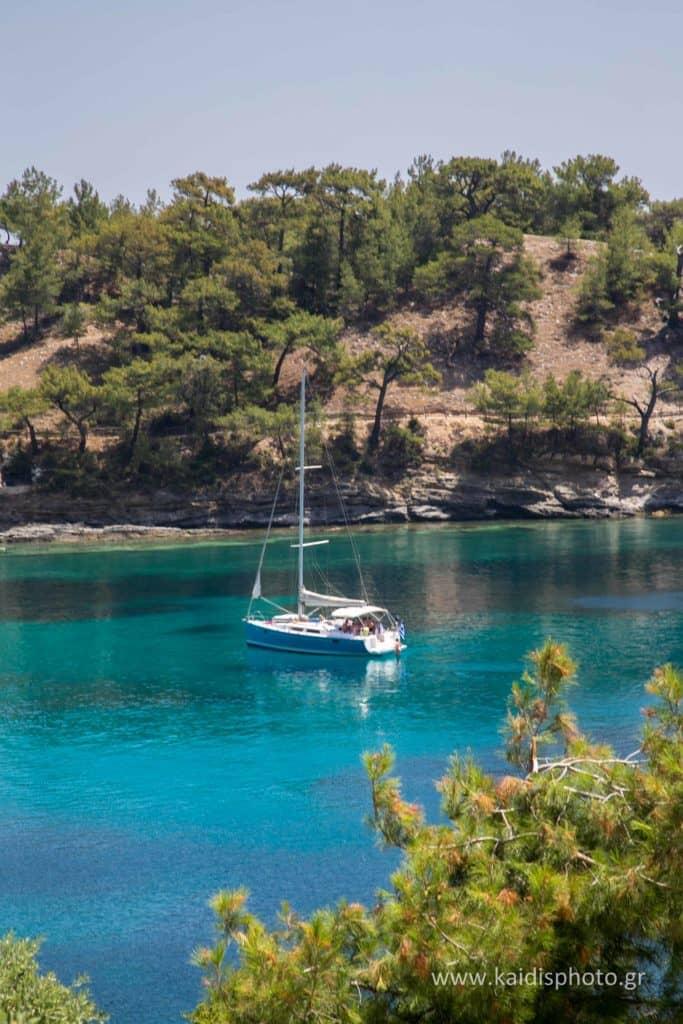 pine trees and Aeolus yacht at Aliki Beach