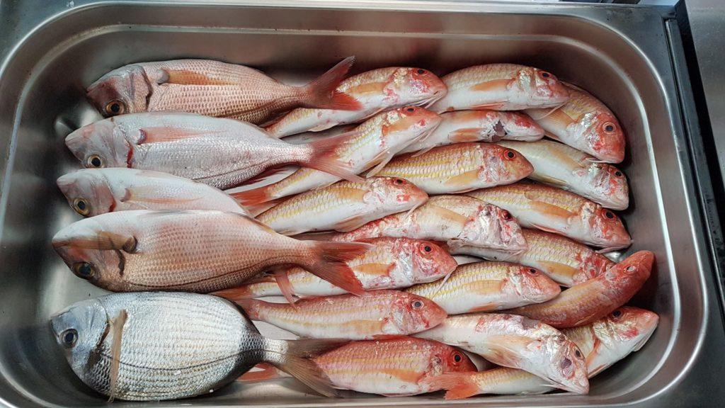 fresh-fish-armeno